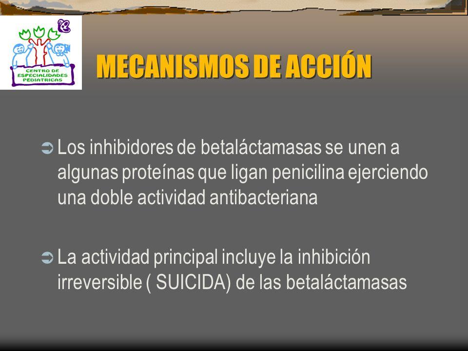 ANTIBIÓTICOS BETALACTÁMICOS EN COMBINACIÓN CON UN INHIBIDOR DE BETALACTAMSAS Actividad antimicrobiana: 1. Ácido clavulanico..........1981 2. Sulbactam