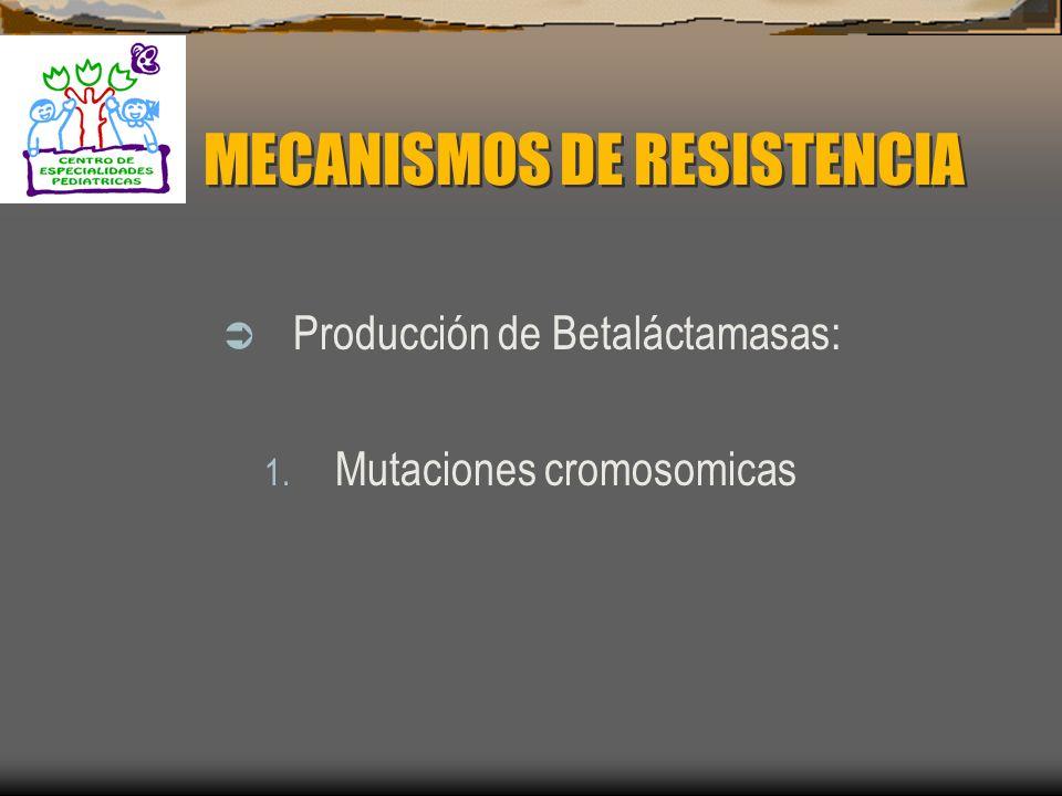 MECANISMOS DE ACCIÓN Los inhibidores de betaláctamasas se unen a algunas proteínas que ligan penicilina ejerciendo una doble actividad antibacteriana