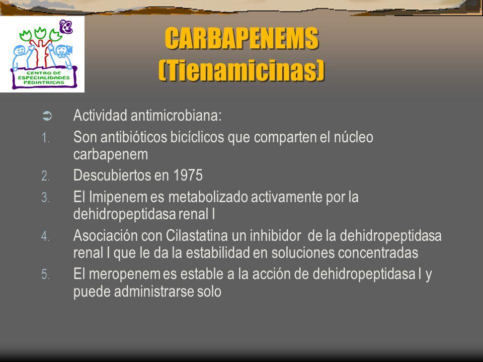 MONOBACTÁMICOS Toxicidad: Misma toxicidad que otros betalactámicos Efectos adversos: Flebitis Elevación de las aminotransferasas Diarrea Náuseas Vómit
