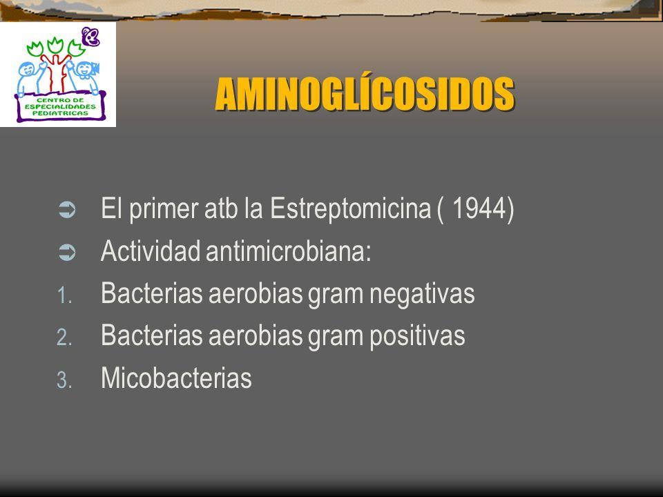 CARBAPENEMS Toxicidad: Crisis convulsivas: 1 – 7% por inhibición de los receptores GABA con disminución de la neurotransmisión inhibitoria Nauseas Vóm