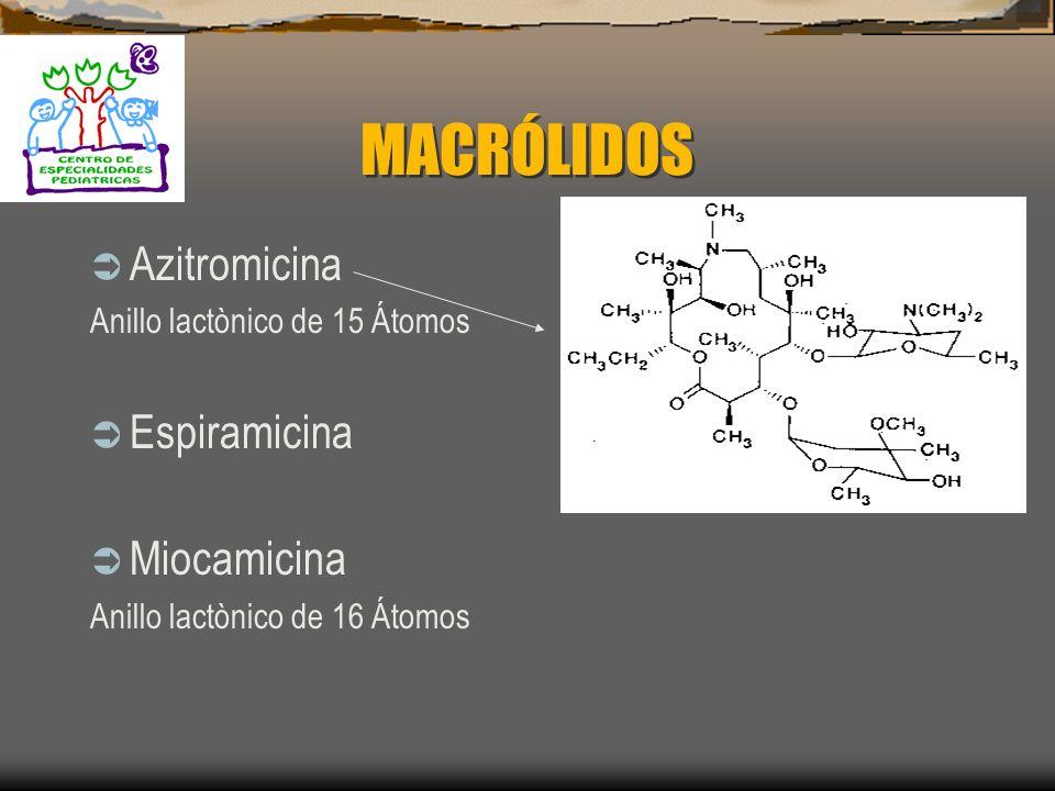 MACRÓLIDOS Eritromicina Roxitromicina Claritromicina Anillo lactònico de 14 átomos