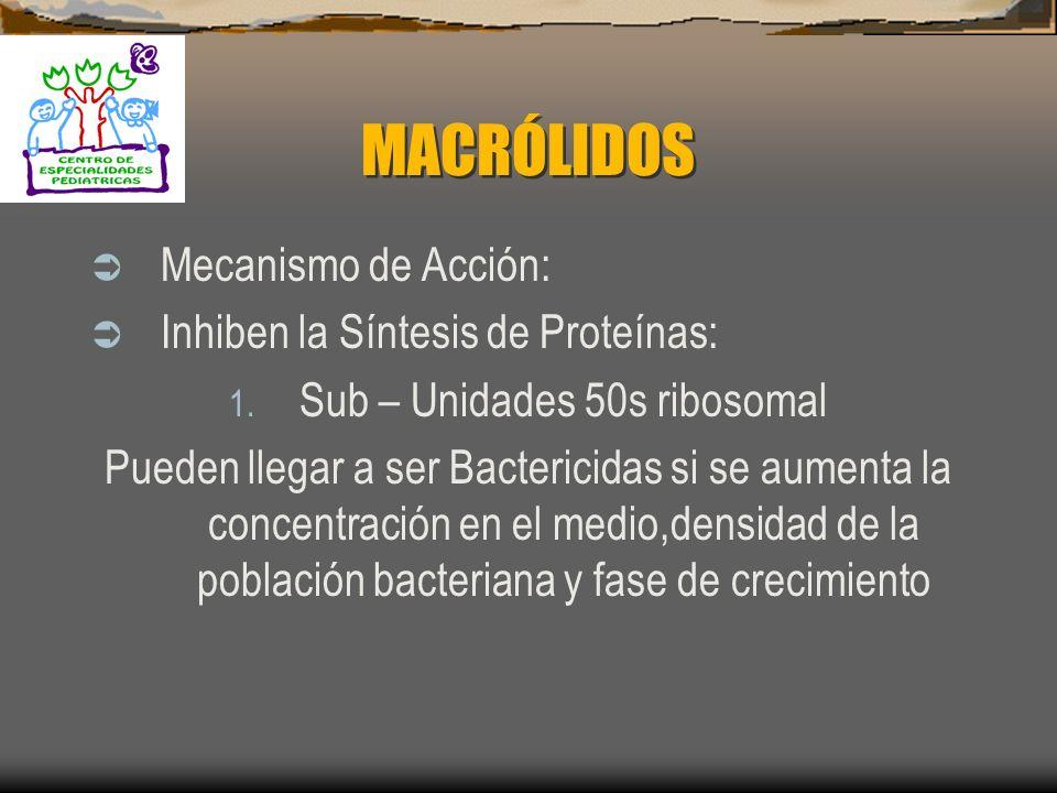 MACRÓLIDOS Azitromicina Anillo lactònico de 15 Átomos Espiramicina Miocamicina Anillo lactònico de 16 Átomos