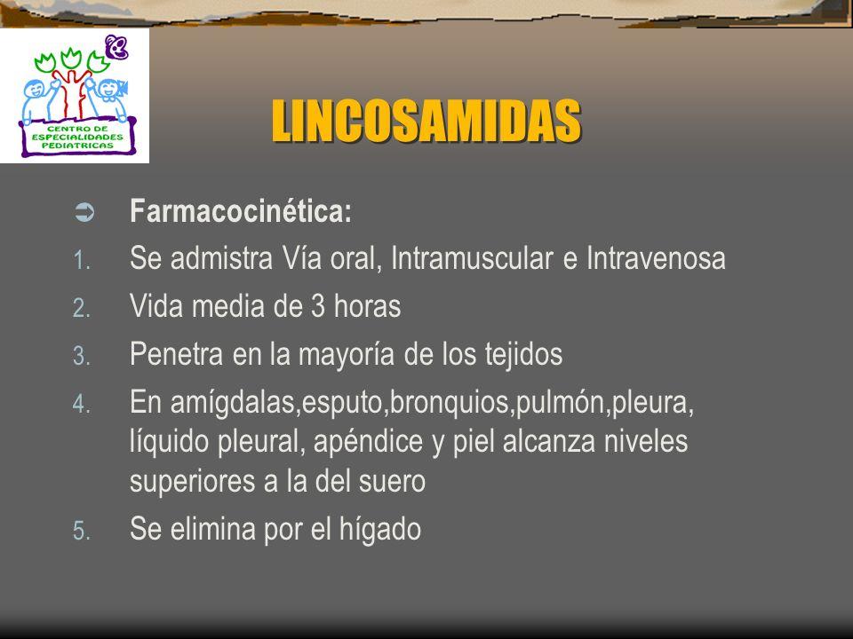 LINCOSAMIDAS Efectos colaterales: 1. Irritación gástrica 2. Erupciones cutáneas 3. Colitis pseudomembranosa 4. Flebitis 5. Hepatotoxicidad