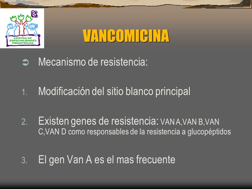 VANCOMICINA Farmacocinética: 1. Solo se puede administrar vía intravenosa 2. No se absorbe vía oral 3. Penetra a Hígado, riñon,bazo, pulmón y corazón,