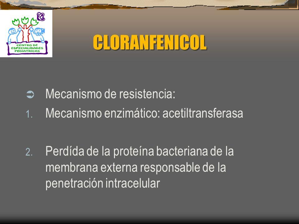 CLORANFENICOL Mecanismo de acción: 1. Interfiere en la síntesis de proteínas al unirse a la subunidad ribosomica 50S Farmacocinética: 1. Penetra en to