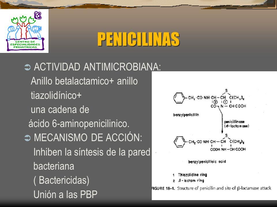 PENICILINAS ACTIVIDAD ANTIMICROBIANA: Anillo betalactamico+ anillo tiazolidínico+ una cadena de ácido 6-aminopenicilinico.
