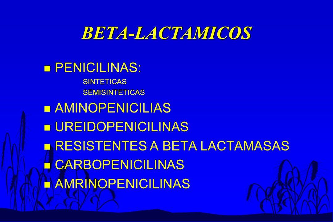 BETA-LACTAMICOS n PENICILINAS: SINTETICAS SEMISINTETICAS n AMINOPENICILIAS n UREIDOPENICILINAS n RESISTENTES A BETA LACTAMASAS n CARBOPENICILINAS n AM