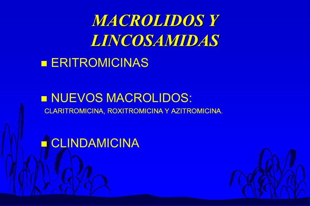 MACROLIDOS Y LINCOSAMIDAS n ERITROMICINAS n NUEVOS MACROLIDOS: CLARITROMICINA, ROXITROMICINA Y AZITROMICINA. n CLINDAMICINA