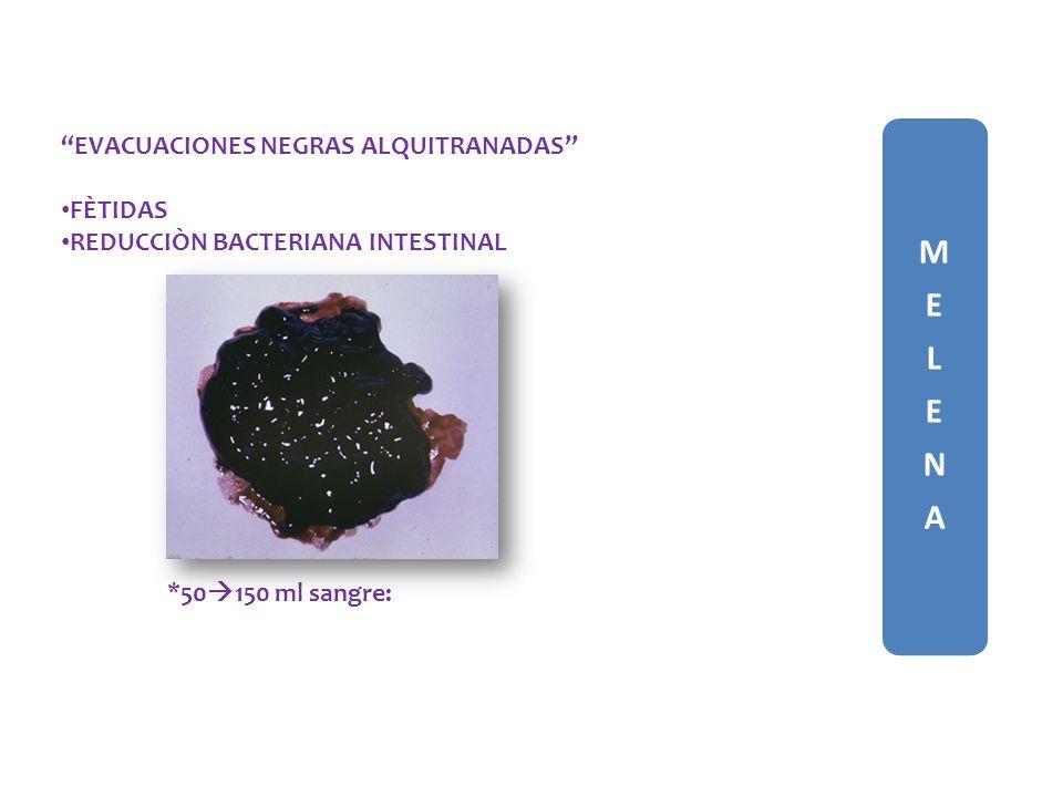 MELENAMELENA EVACUACIONES NEGRAS ALQUITRANADAS FÈTIDAS REDUCCIÒN BACTERIANA INTESTINAL *50 150 ml sangre: