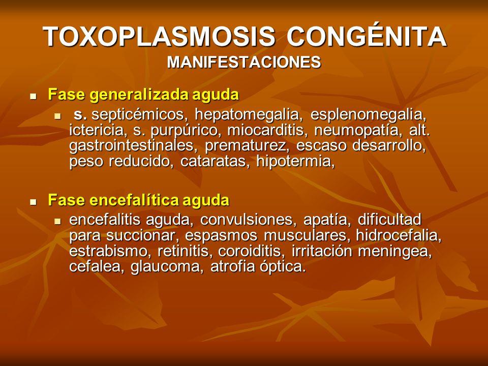 TOXOPLASMOSIS CONGÉNITA MANIFESTACIONES Fase generalizada aguda Fase generalizada aguda s. septicémicos, hepatomegalia, esplenomegalia, ictericia, s.
