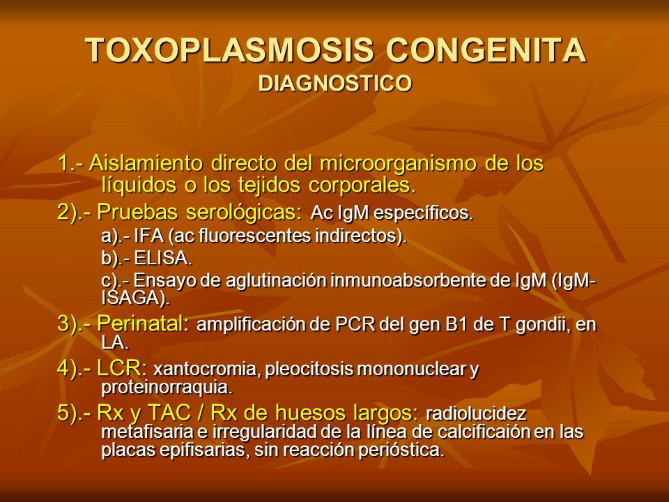 TOXOPLASMOSIS CONGENITA DIAGNOSTICO 1.- Aislamiento directo del microorganismo de los líquidos o los tejidos corporales. 2).- Pruebas serológicas: Ac