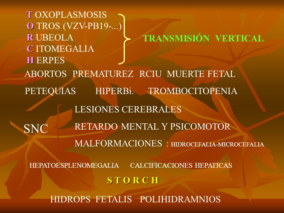 T T OXOPLASMOSIS O O TROS (VZV-PB19-...) R R UBEOLA C C ITOMEGALIA H H ERPES ABORTOS PREMATUREZ RCIU MUERTE FETAL PETEQUIAS HIPERBi. TROMBOCITOPENIA S