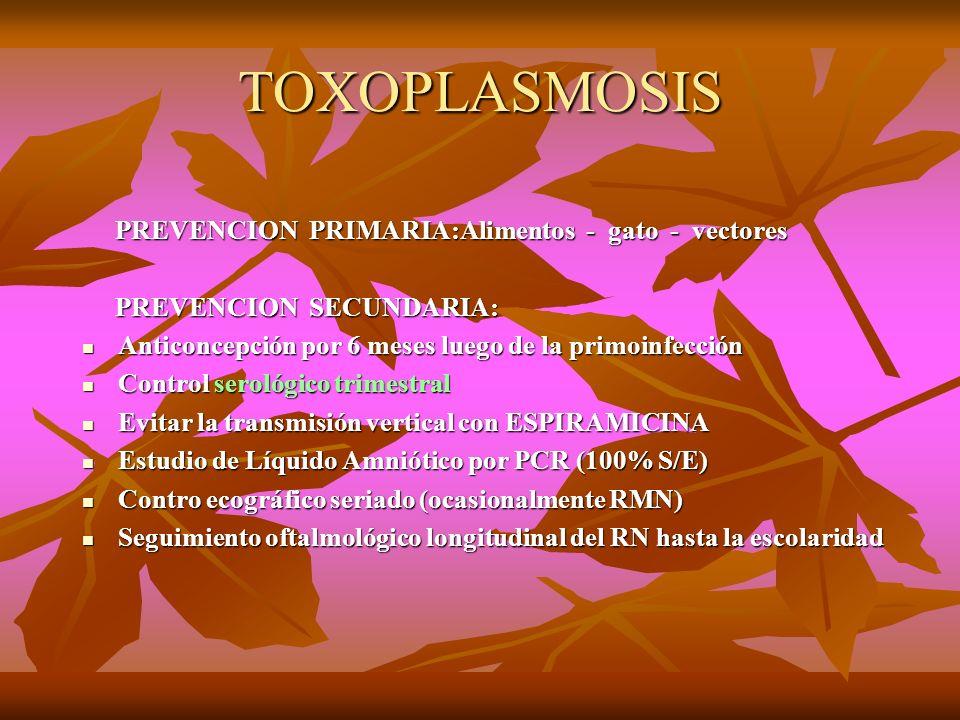 TOXOPLASMOSIS PREVENCION PRIMARIA:Alimentos - gato - vectores PREVENCION PRIMARIA:Alimentos - gato - vectores PREVENCION SECUNDARIA: PREVENCION SECUND