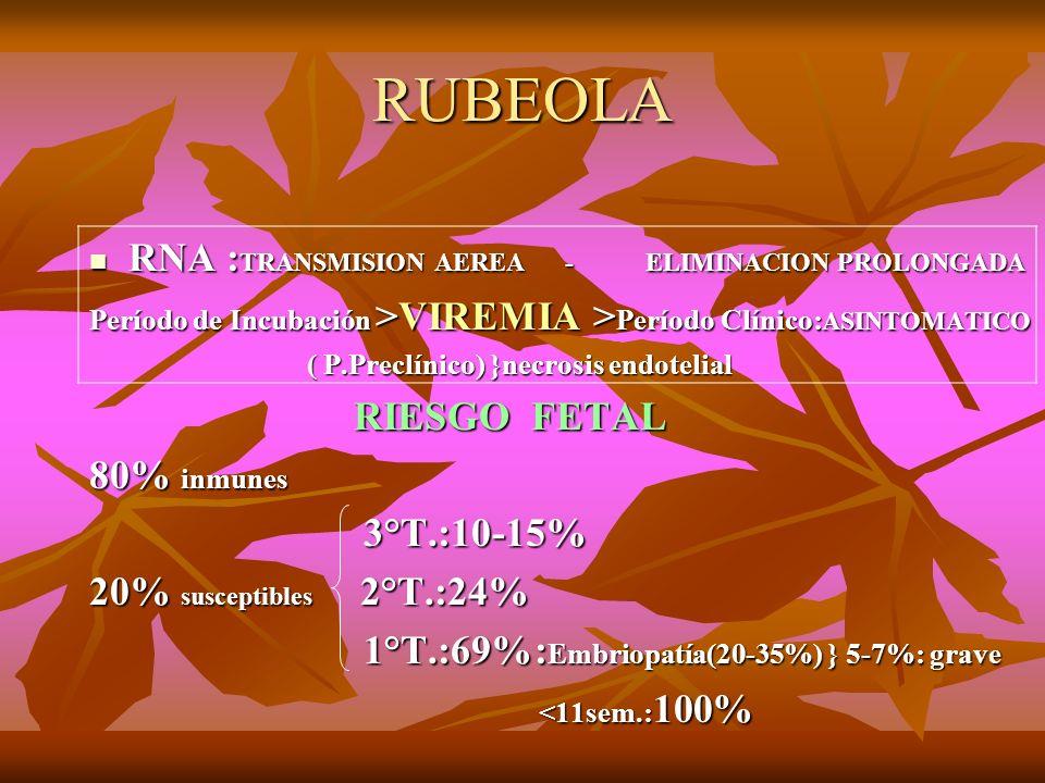 RUBEOLA RNA : TRANSMISION AEREA - ELIMINACION PROLONGADA RNA : TRANSMISION AEREA - ELIMINACION PROLONGADA Período de Incubación >VIREMIA > Período Clí