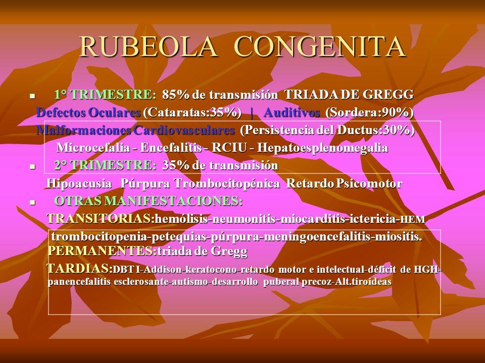 RUBEOLA CONGENITA 1° TRIMESTRE: 85% de transmisión TRIADA DE GREGG 1° TRIMESTRE: 85% de transmisión TRIADA DE GREGG Defectos Oculares (Cataratas:35%)