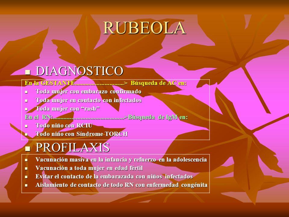 RUBEOLA DIAGNOSTICO DIAGNOSTICO En la GESTANTE...............................> Búsqueda de AC en: Toda mujer con embarazo confirmado Toda mujer con em