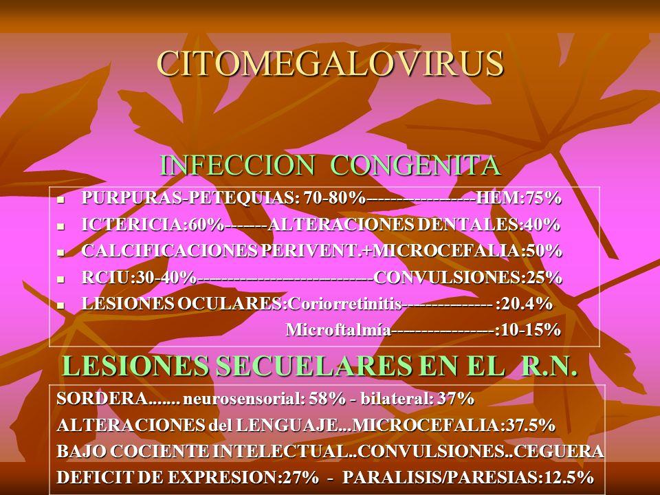 CITOMEGALOVIRUS INFECCION CONGENITA INFECCION CONGENITA PURPURAS-PETEQUIAS: 70-80%------------------HEM:75% PURPURAS-PETEQUIAS: 70-80%----------------