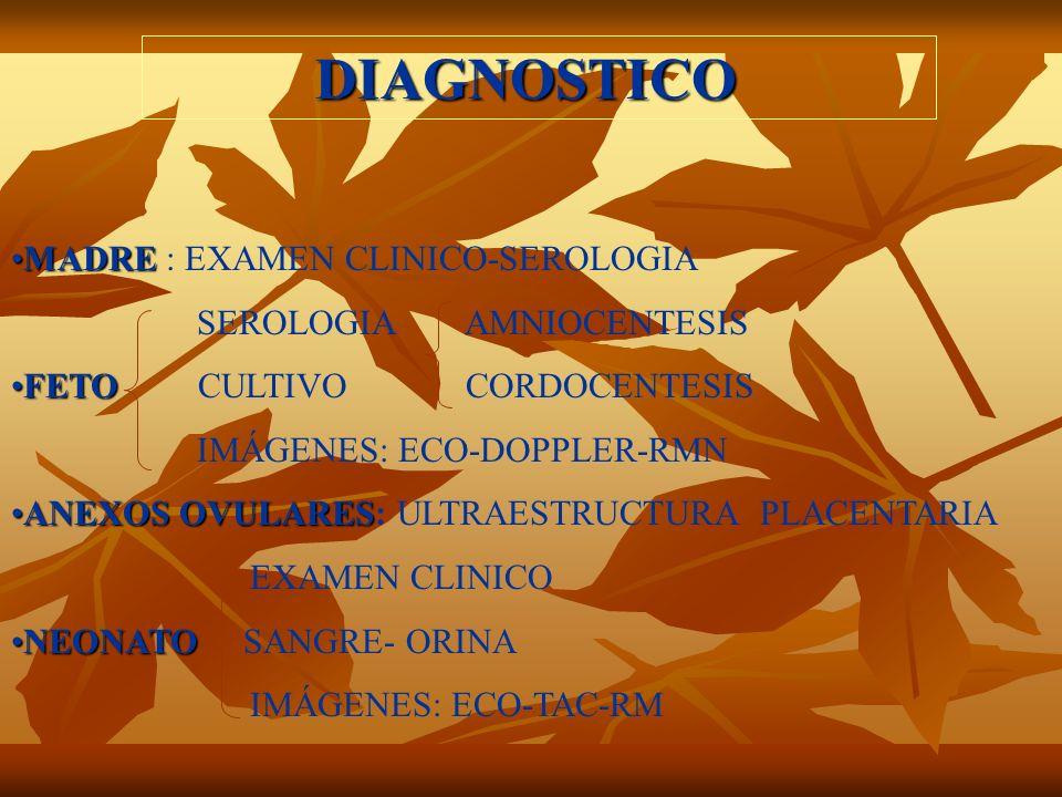 DIAGNOSTICO MADREMADRE : EXAMEN CLINICO-SEROLOGIA SEROLOGIA AMNIOCENTESIS FETOFETO CULTIVO CORDOCENTESIS IMÁGENES: ECO-DOPPLER-RMN ANEXOS OVULARESANEX