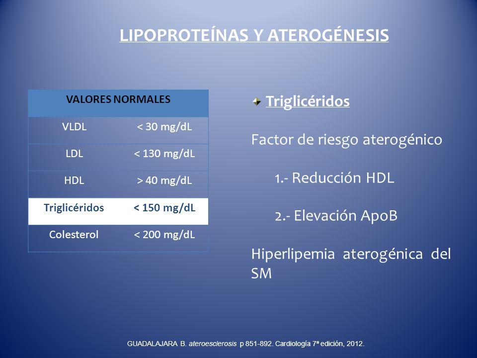 LIPOPROTEÍNAS Y ATEROGÉNESIS Triglicéridos Factor de riesgo aterogénico 1.- Reducción HDL 2.- Elevación ApoB Hiperlipemia aterogénica del SM VALORES N