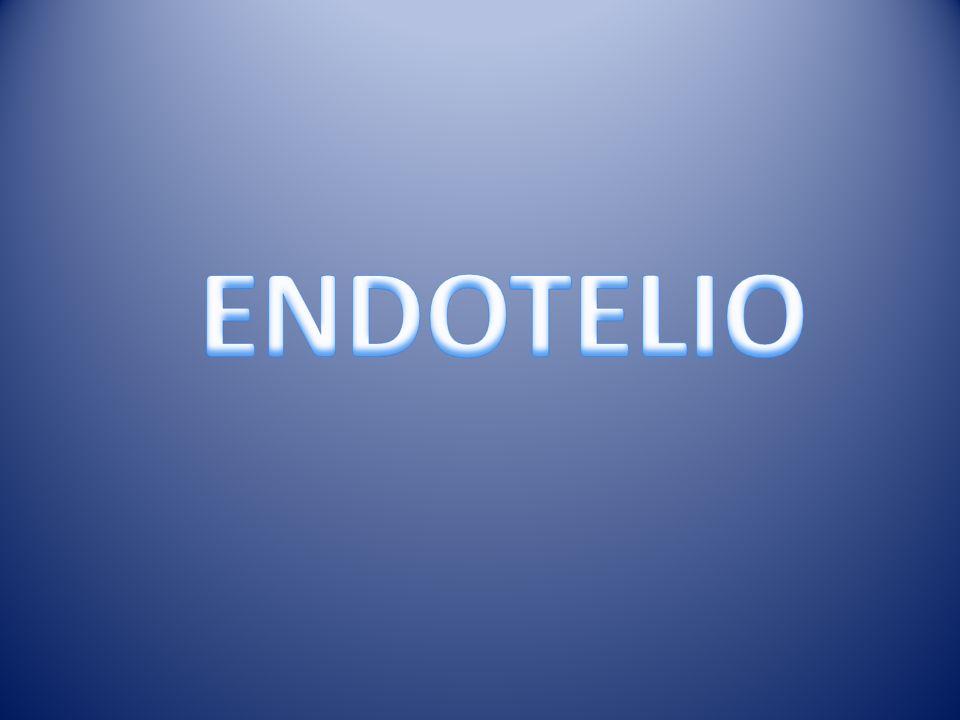 LIPOPROTEÍNAS Y ATEROGÉNESIS HDL-Colesterol Incremento de A-I Reducción Aterogénesis Factor de Riesgo Aterogénico: <35 mg/dL VALORES NORMALES VLDL< 30 mg/dL LDL< 130 mg/dL HDL> 40 mg/dL Triglicéridos< 150 mg/dL Colesterol< 200 mg/dL GUADALAJARA B.