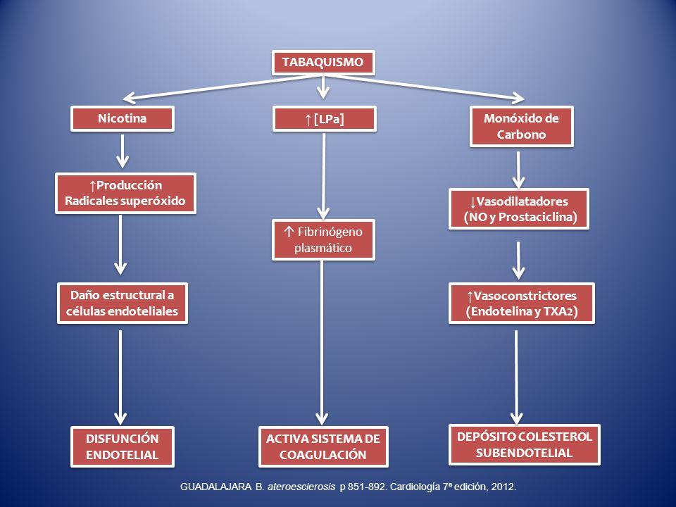 TABAQUISMO Monóxido de Carbono [LPa] Nicotina ACTIVA SISTEMA DE COAGULACIÓN DEPÓSITO COLESTEROL SUBENDOTELIAL DISFUNCIÓN ENDOTELIAL Vasodilatadores (N