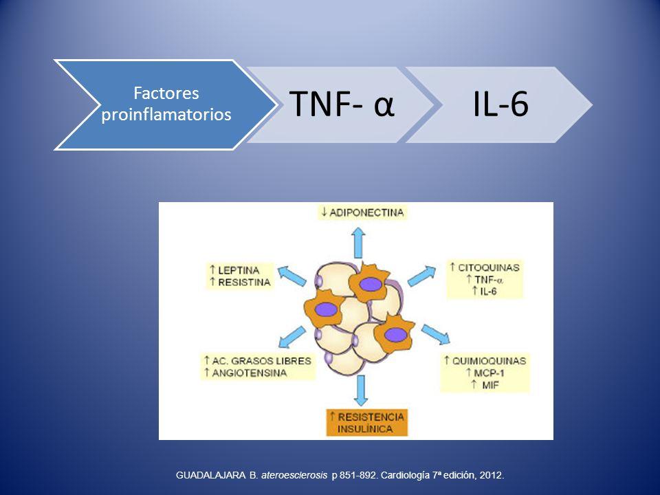 Factores proinflamatorios TNF- αIL-6 GUADALAJARA B. ateroesclerosis p 851-892. Cardiología 7ª edición, 2012.
