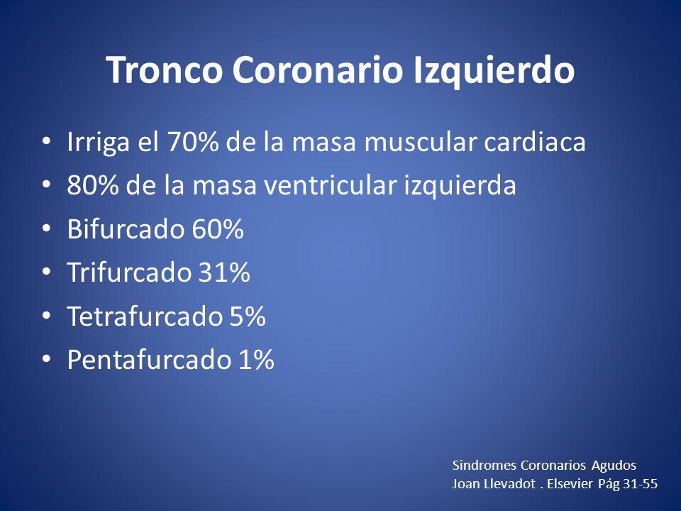 Tronco Coronario Izquierdo Irriga el 70% de la masa muscular cardiaca 80% de la masa ventricular izquierda Bifurcado 60% Trifurcado 31% Tetrafurcado 5