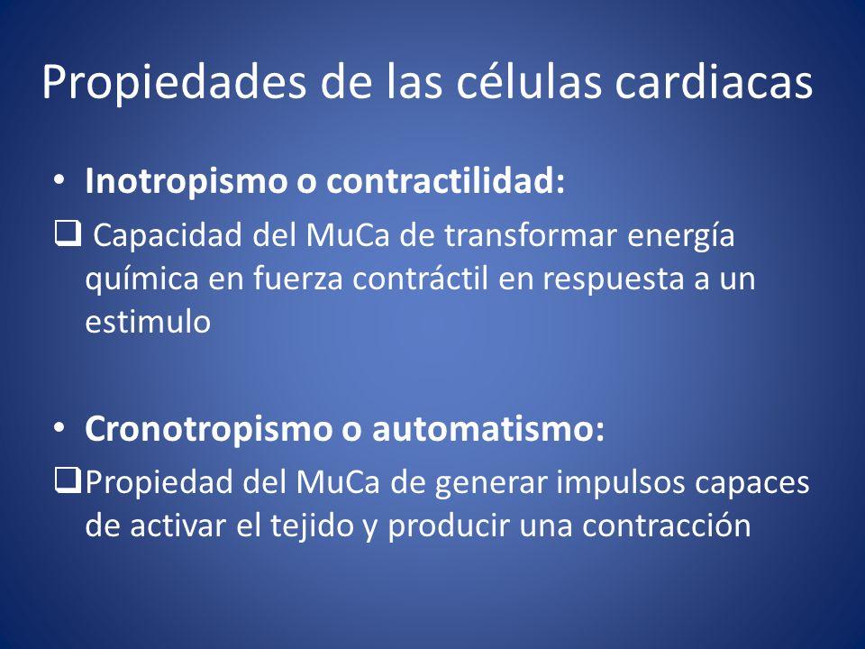 Propiedades de las células cardiacas Inotropismo o contractilidad: Capacidad del MuCa de transformar energía química en fuerza contráctil en respuesta