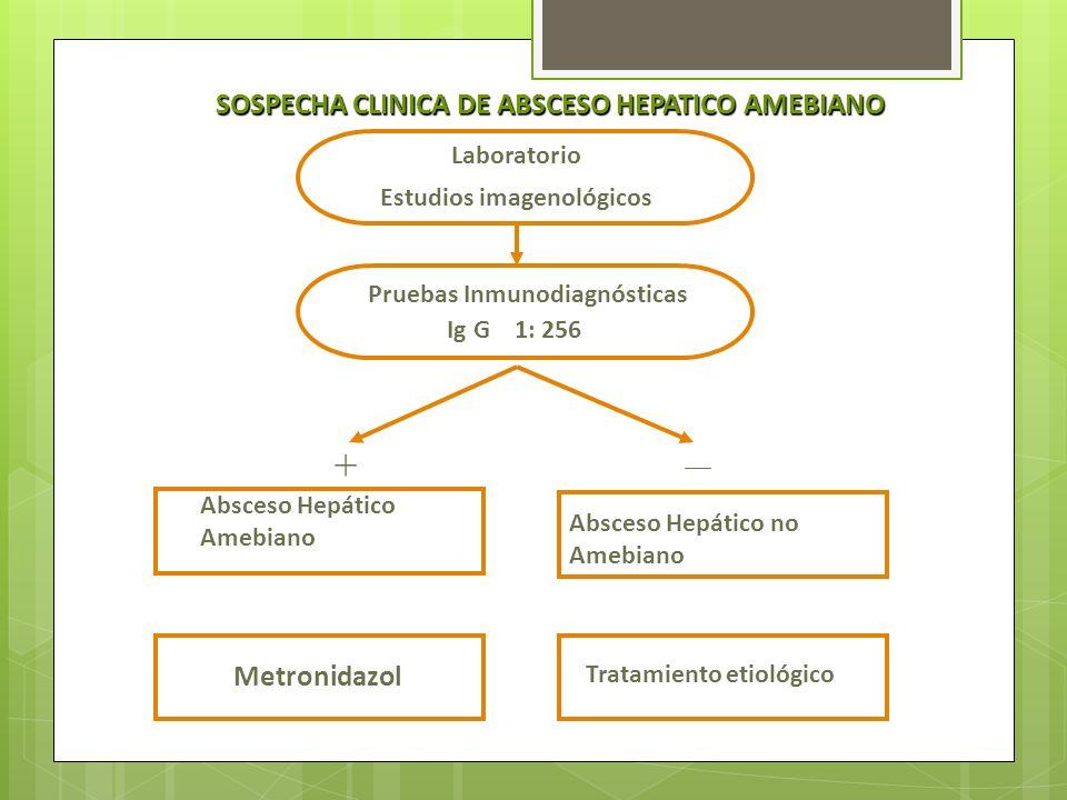 SOSPECHA CLINICA DE ABSCESO HEPATICO AMEBIANO Laboratorio Estudios imagenológicos Pruebas Inmunodiagnósticas Ig G 1: 256 Absceso Hepático Amebiano Abs