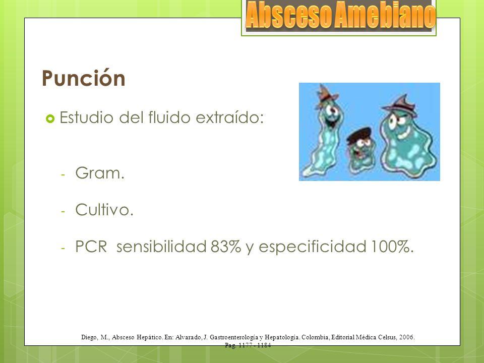 Punción Estudio del fluido extraído: - Gram. - Cultivo. - PCR sensibilidad 83% y especificidad 100%. Diego, M., Absceso Hepático. En: Alvarado, J. Gas
