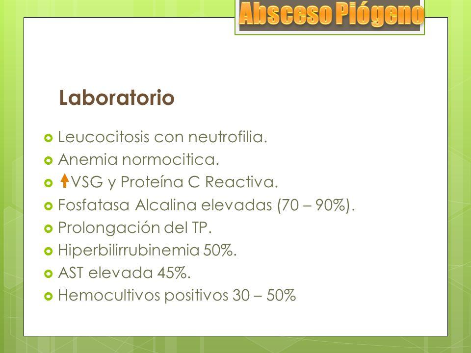 Laboratorio Leucocitosis con neutrofilia. Anemia normocitica. VSG y Proteína C Reactiva. Fosfatasa Alcalina elevadas (70 – 90%). Prolongación del TP.