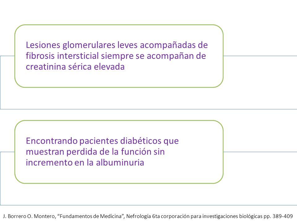 Lesiones glomerulares leves acompañadas de fibrosis intersticial siempre se acompañan de creatinina sérica elevada Encontrando pacientes diabéticos qu