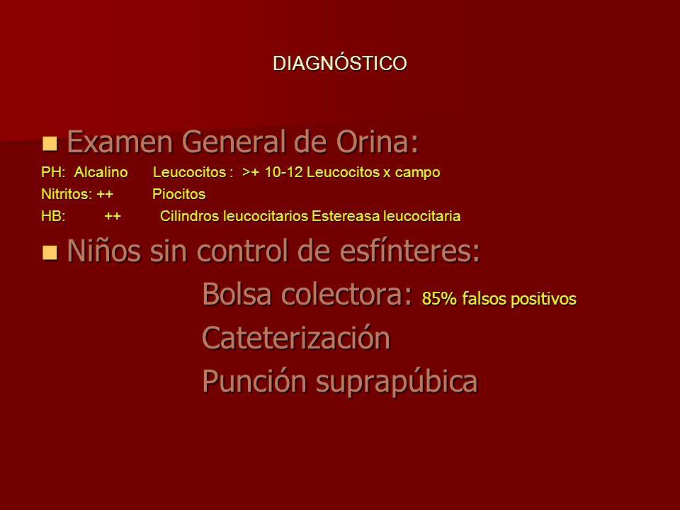 DIAGNÓSTICO Examen General de Orina: Examen General de Orina: PH: Alcalino Leucocitos : >+ 10-12 Leucocitos x campo Nitritos: ++ Piocitos HB: ++ Cilin