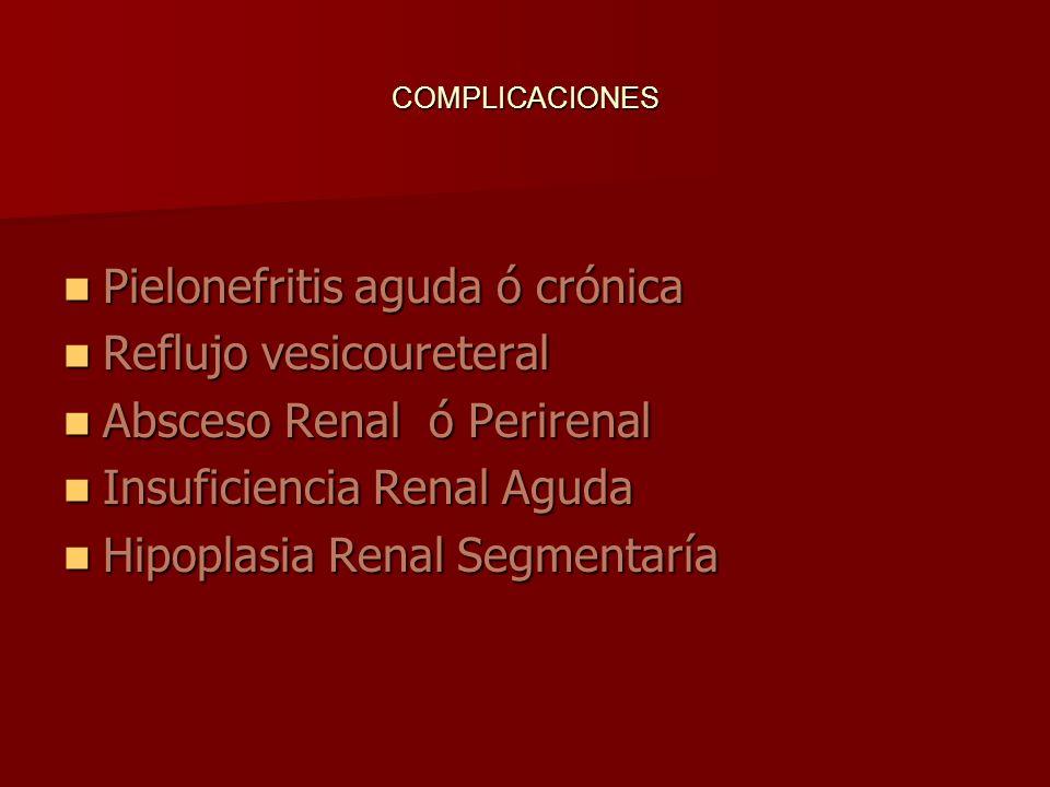 COMPLICACIONES Pielonefritis aguda ó crónica Pielonefritis aguda ó crónica Reflujo vesicoureteral Reflujo vesicoureteral Absceso Renal ó Perirenal Abs