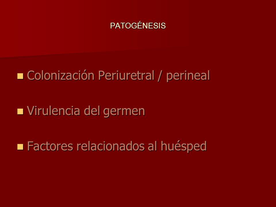 PATOGÉNESIS Colonización Periuretral / perineal Colonización Periuretral / perineal Virulencia del germen Virulencia del germen Factores relacionados