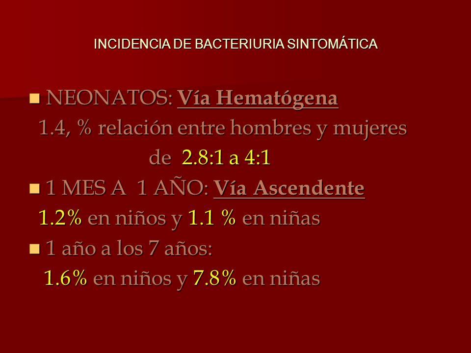 INCIDENCIA DE BACTERIURIA SINTOMÁTICA NEONATOS: Vía Hematógena NEONATOS: Vía Hematógena 1.4, % relación entre hombres y mujeres 1.4, % relación entre