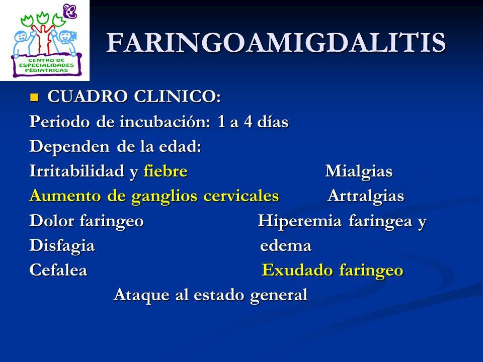 FARINGOAMIGDALITIS CUADRO CLINICO: CUADRO CLINICO: Periodo de incubación: 1 a 4 días Dependen de la edad: Irritabilidad y fiebre Mialgias Aumento de g