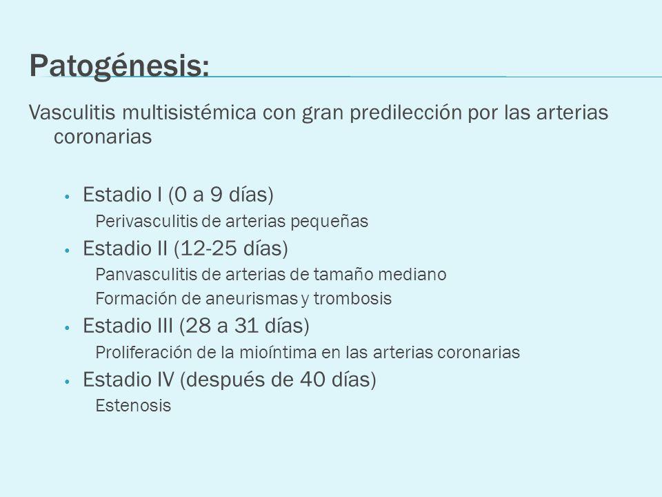 Patogénesis: Vasculitis multisistémica con gran predilección por las arterias coronarias Estadio I (0 a 9 días) Perivasculitis de arterias pequeñas Es