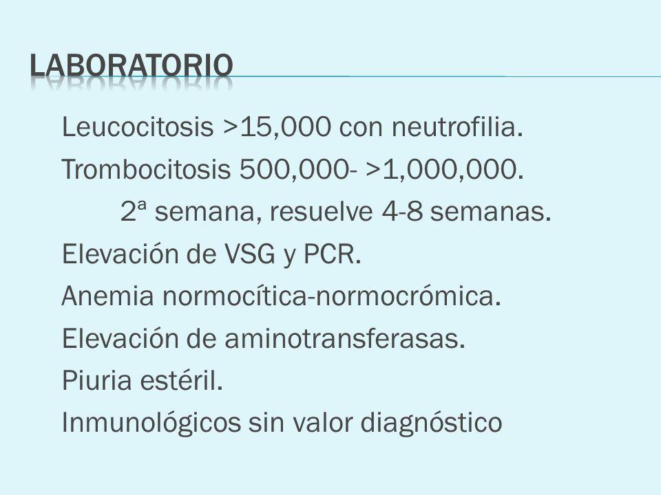 Leucocitosis >15,000 con neutrofilia. Trombocitosis 500,000- >1,000,000. 2ª semana, resuelve 4-8 semanas. Elevación de VSG y PCR. Anemia normocítica-n