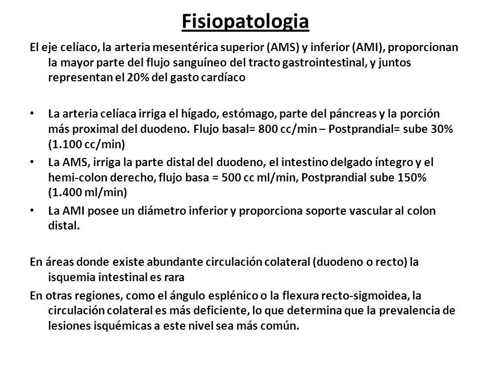 Fisiopatologia El eje celíaco, la arteria mesentérica superior (AMS) y inferior (AMI), proporcionan la mayor parte del flujo sanguíneo del tracto gast