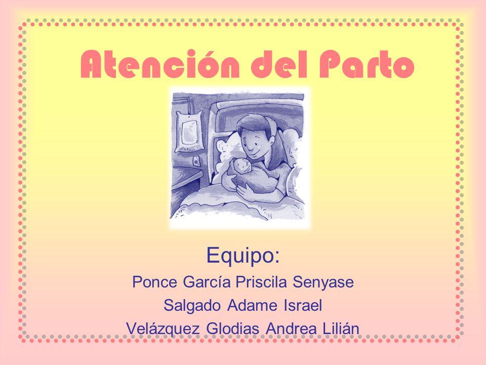 Atención del Parto Equipo: Ponce García Priscila Senyase Salgado Adame Israel Velázquez Glodias Andrea Lilián