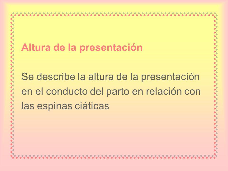 Altura de la presentación Se describe la altura de la presentación en el conducto del parto en relación con las espinas ciáticas