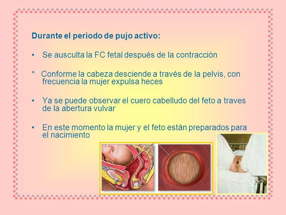 Durante el periodo de pujo activo: Se ausculta la FC fetal después de la contracción * Conforme la cabeza desciende a través de la pelvis, con frecuen
