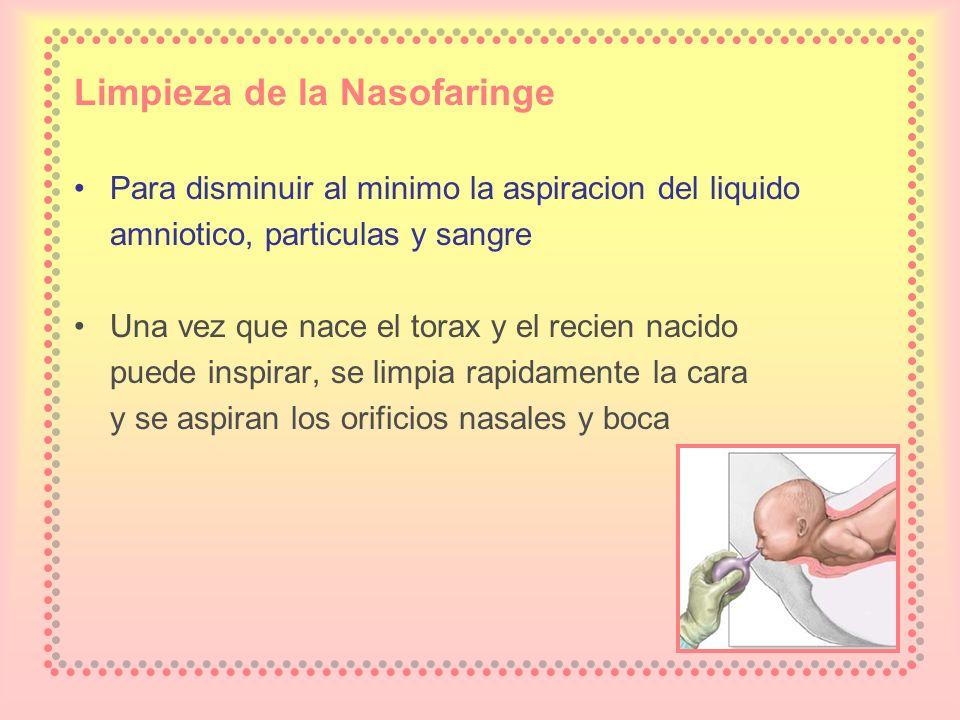 Limpieza de la Nasofaringe Para disminuir al minimo la aspiracion del liquido amniotico, particulas y sangre Una vez que nace el torax y el recien nac