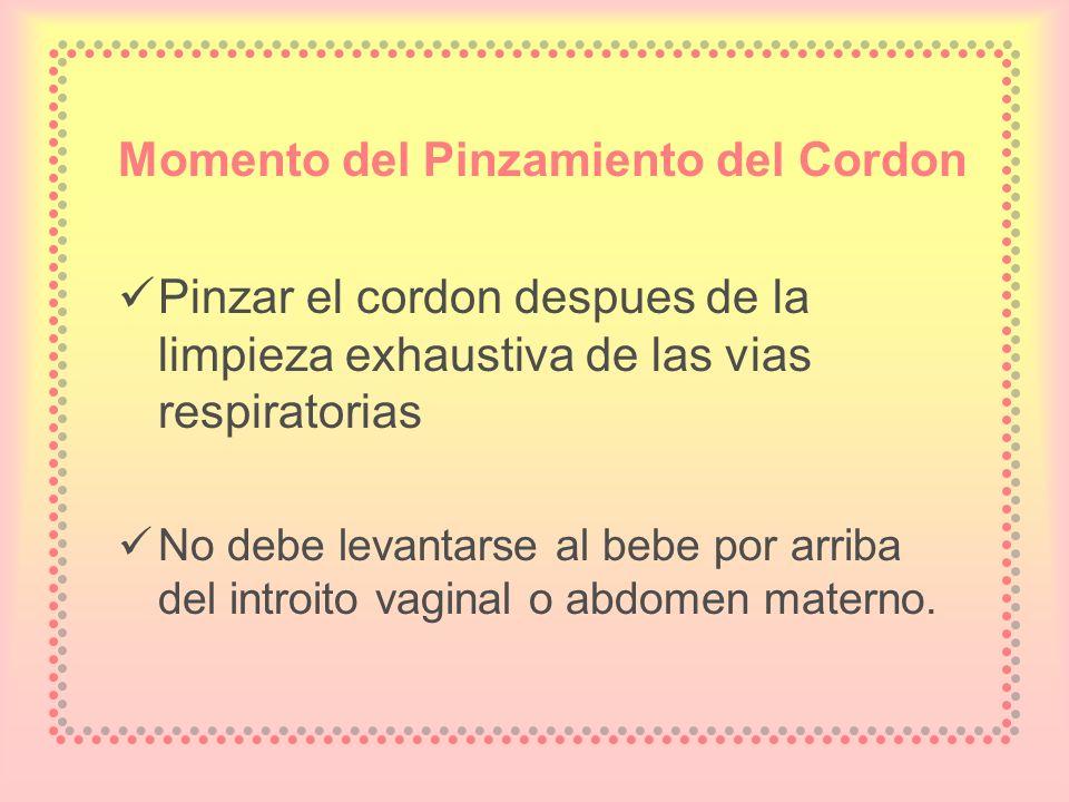 Momento del Pinzamiento del Cordon Pinzar el cordon despues de la limpieza exhaustiva de las vias respiratorias No debe levantarse al bebe por arriba