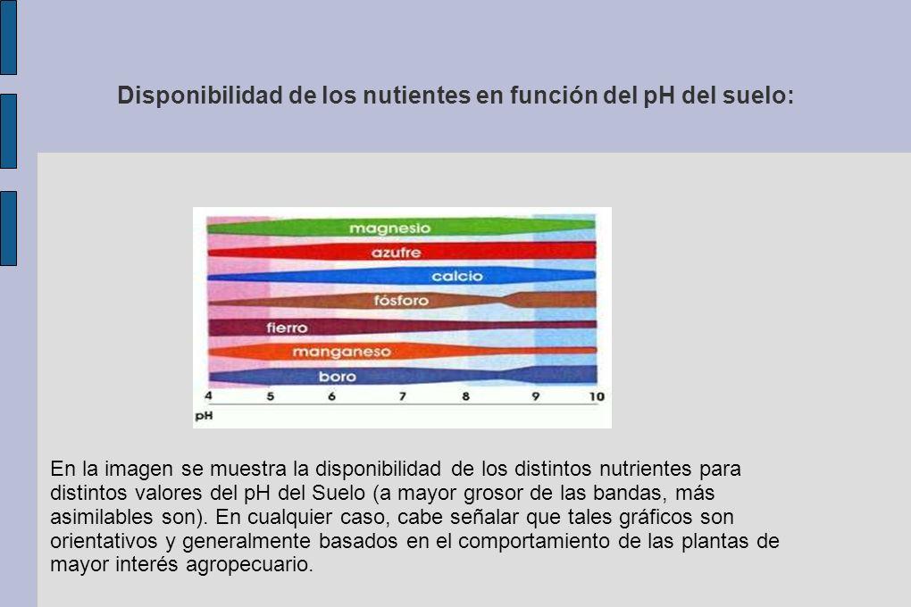 Disponibilidad de los nutientes en función del pH del suelo: En la imagen se muestra la disponibilidad de los distintos nutrientes para distintos valo