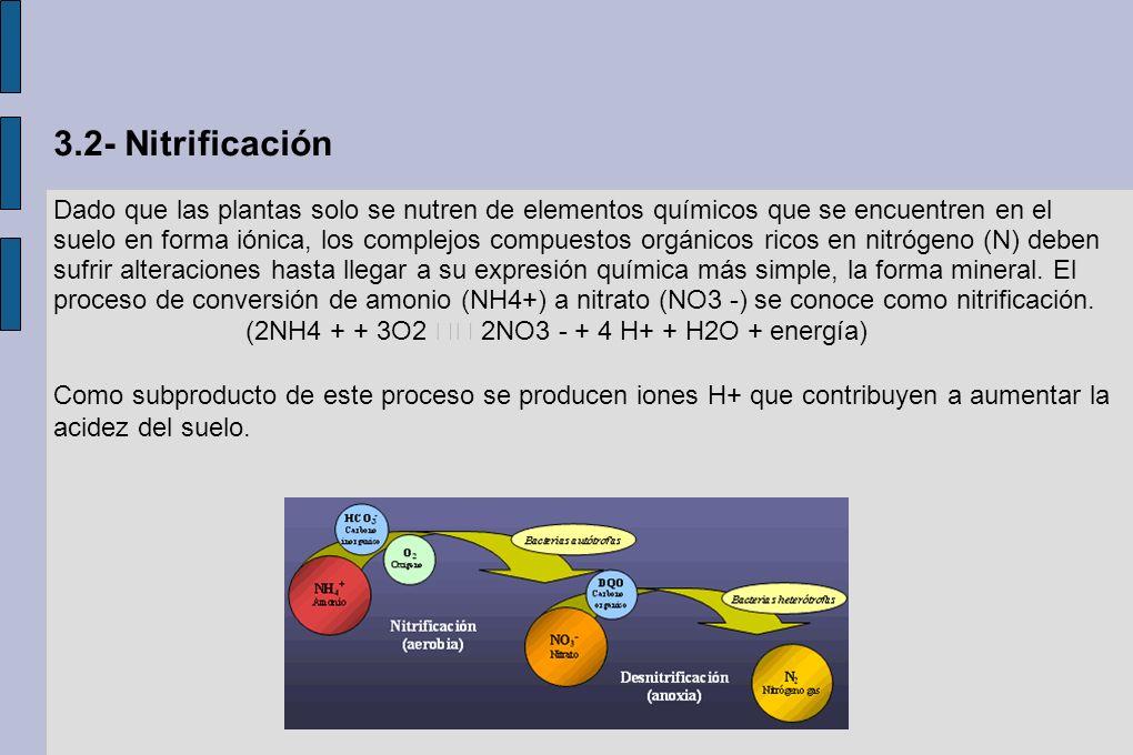 3.2- Nitrificación Dado que las plantas solo se nutren de elementos químicos que se encuentren en el suelo en forma iónica, los complejos compuestos o