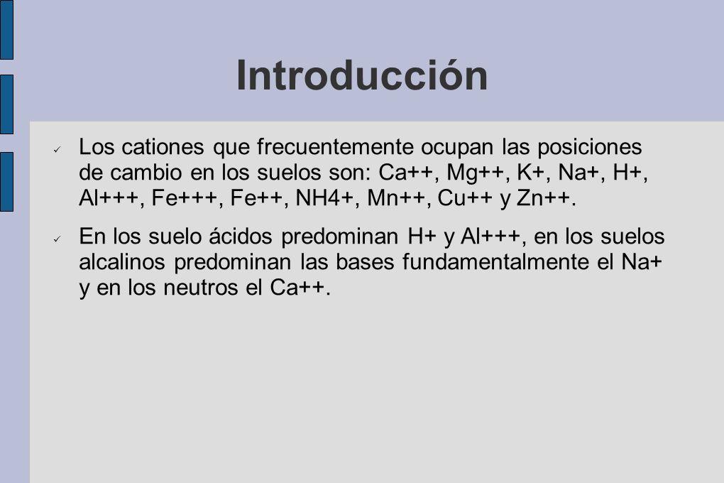Introducción Los cationes que frecuentemente ocupan las posiciones de cambio en los suelos son: Ca++, Mg++, K+, Na+, H+, Al+++, Fe+++, Fe++, NH4+, Mn+