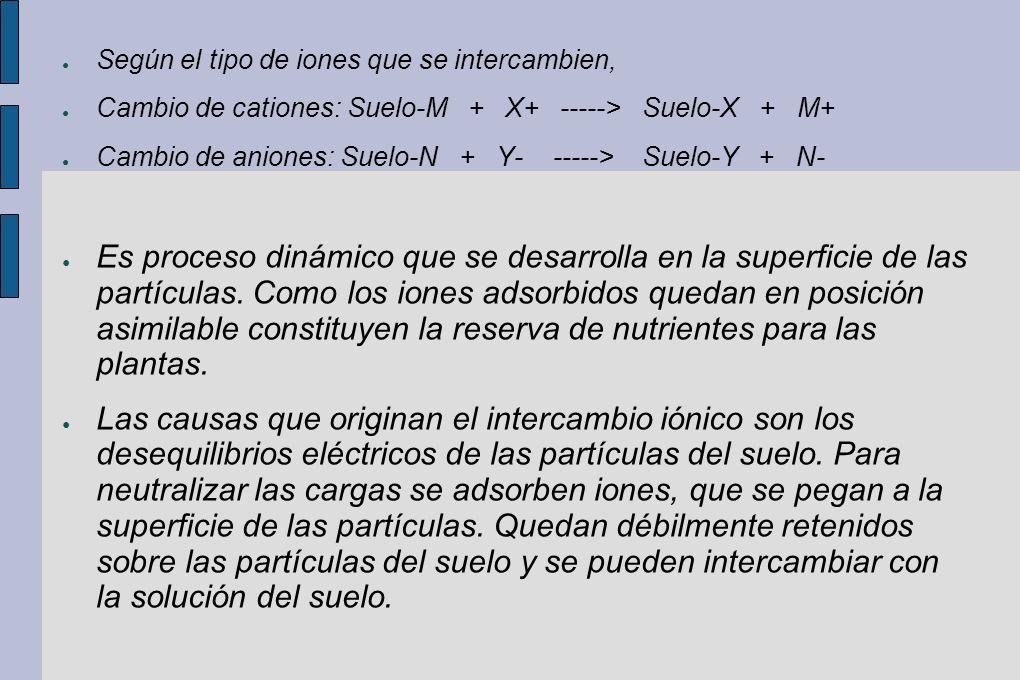 Según el tipo de iones que se intercambien, Cambio de cationes: Suelo-M + X+ -----> Suelo-X + M+ Cambio de aniones: Suelo-N + Y- -----> Suelo-Y + N- E