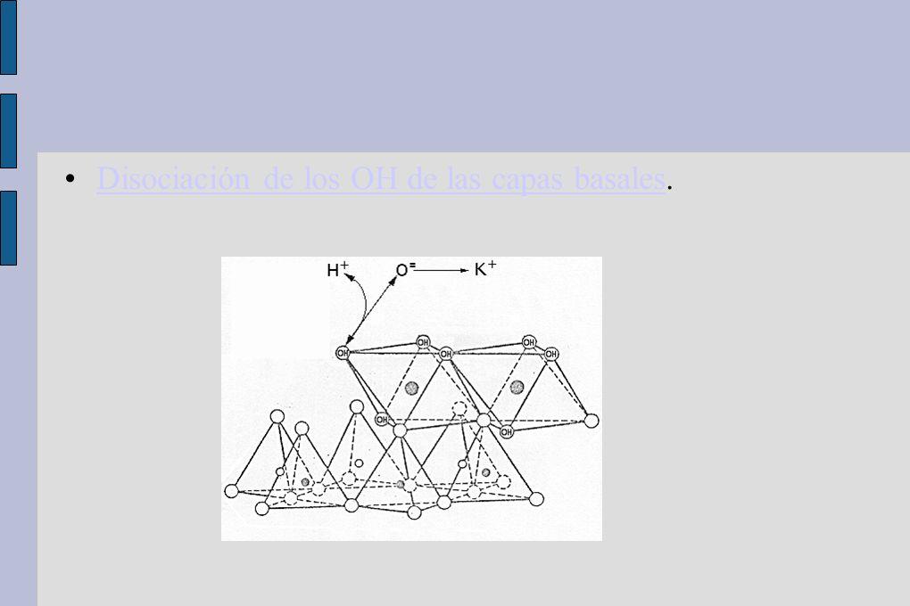 Disociación de los OH de las capas basales.Disociación de los OH de las capas basales